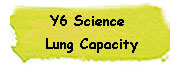 Y6 Science - Luung Capacity