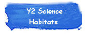 Y2 Science - Habitats