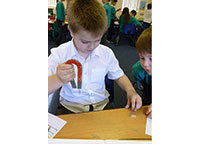 Y3 Science Investigation - Magnet Strength