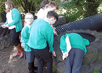 Y6 Science - Hunting for Living Things